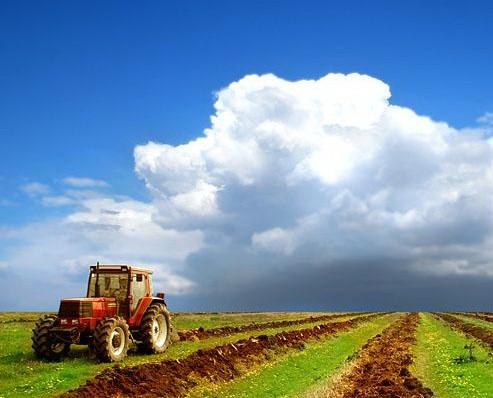 Финансирование госпрограммы развития сельского хозяйства на 2013-2020 гг. вырастет