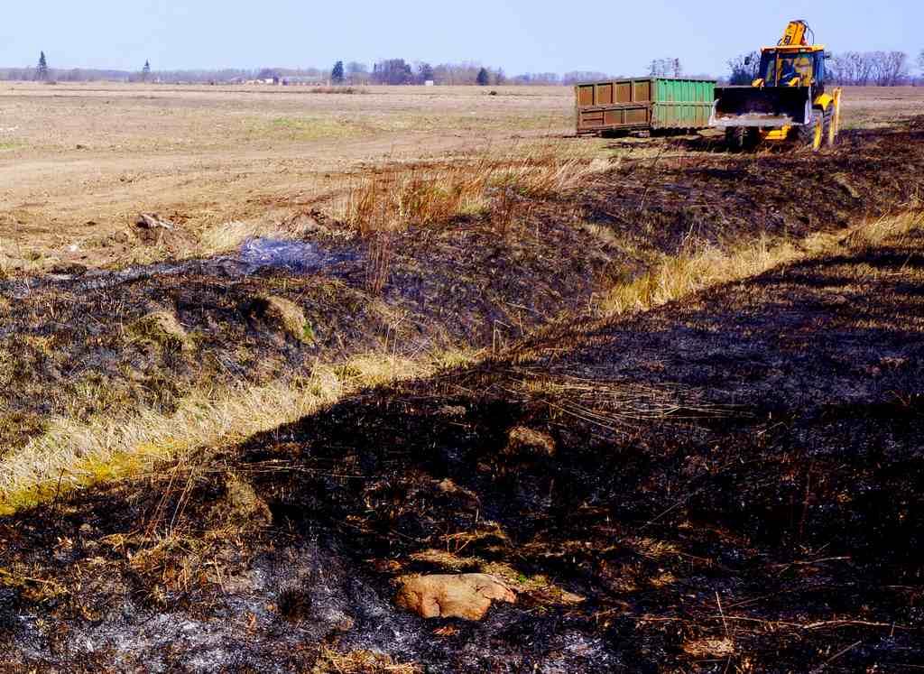 Польский фермер раскрыл секрет борьбы с поджогами полей в Калининградской области