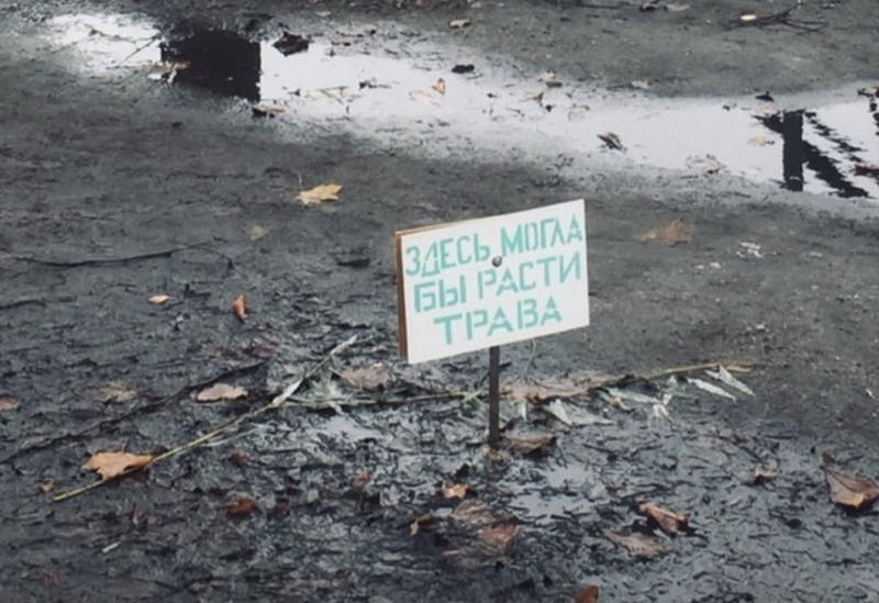 В Калининграде появилась могила вытоптанной травы (фото)