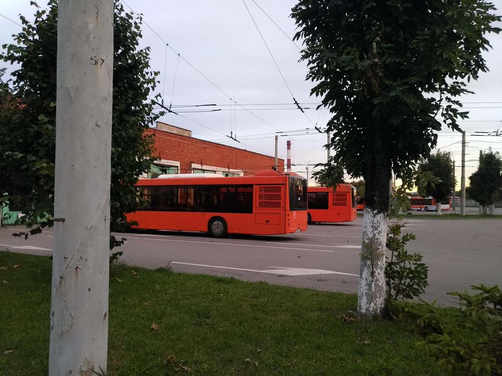 Директор зеленоградск транс калининград