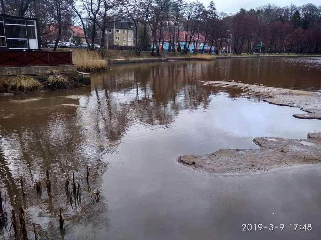 Озеро в центре Светлогорска катастрофически обмелело - соцсети (фото)