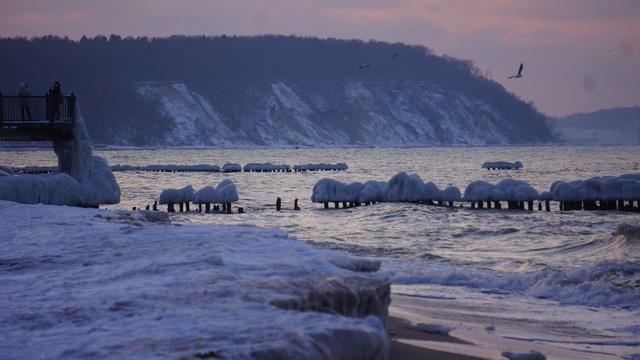 Зимний берег Балтийского моря в Светлогорске.jpg