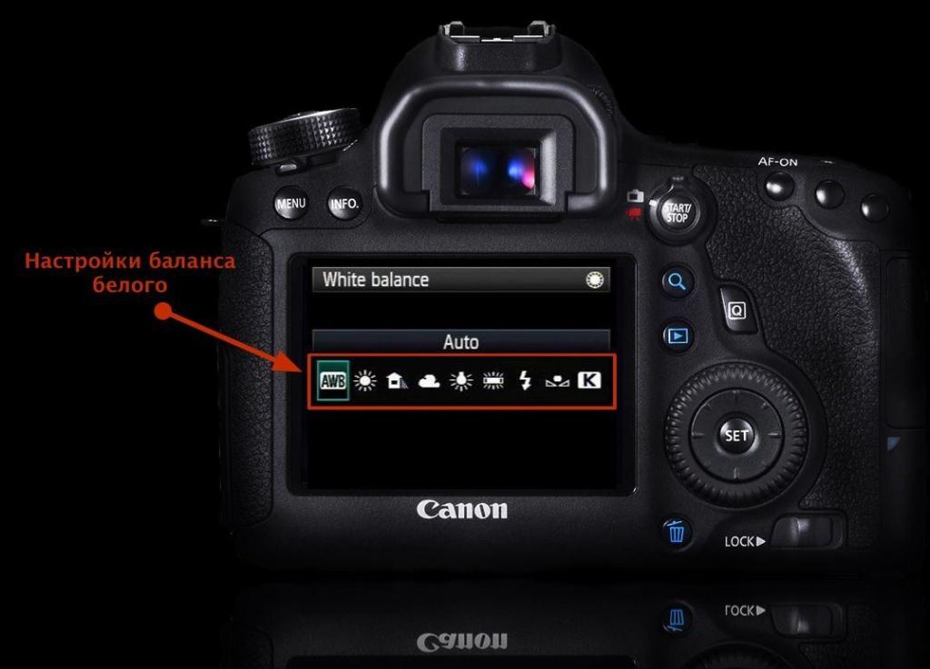 выставляйте температуру в фотоаппарате гжель рябинушка